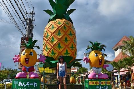11_Pineapple_Park_Fotor.jpg